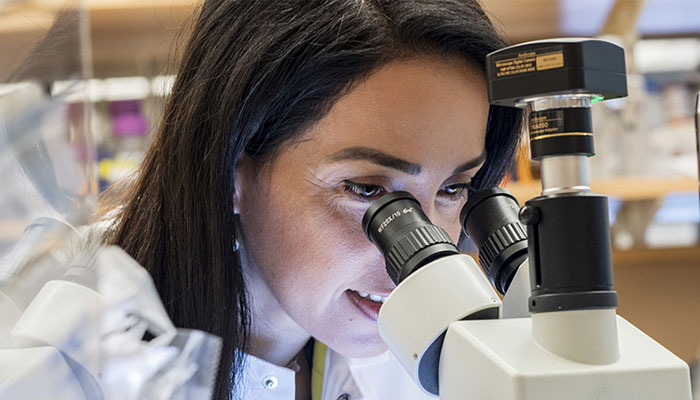 Brigham researcher looking through microscope
