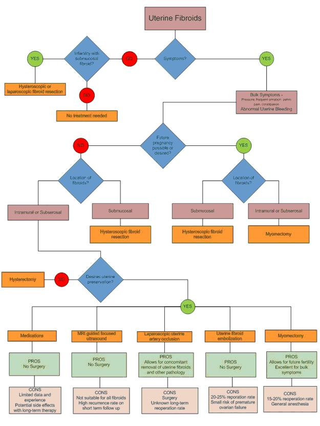 fibroid treatment decision tree