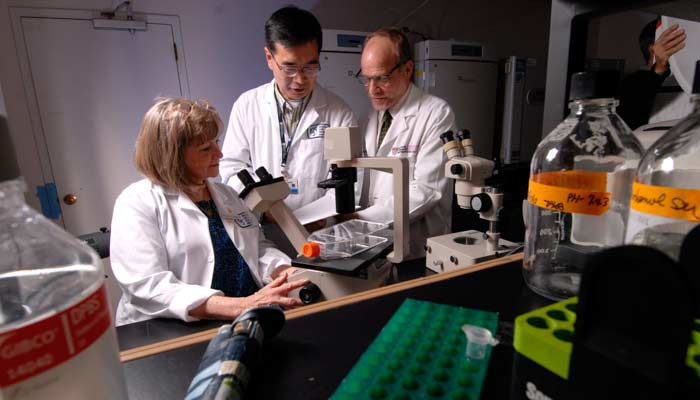 This photo is of researchers from Brigham and Women's Hospital in a laboratory investigating stem ce